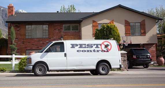 Pest Control Improves Habitability